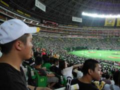 野球・サッカー観戦