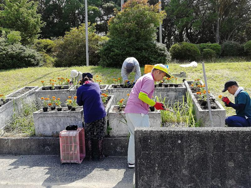 花を植える作業